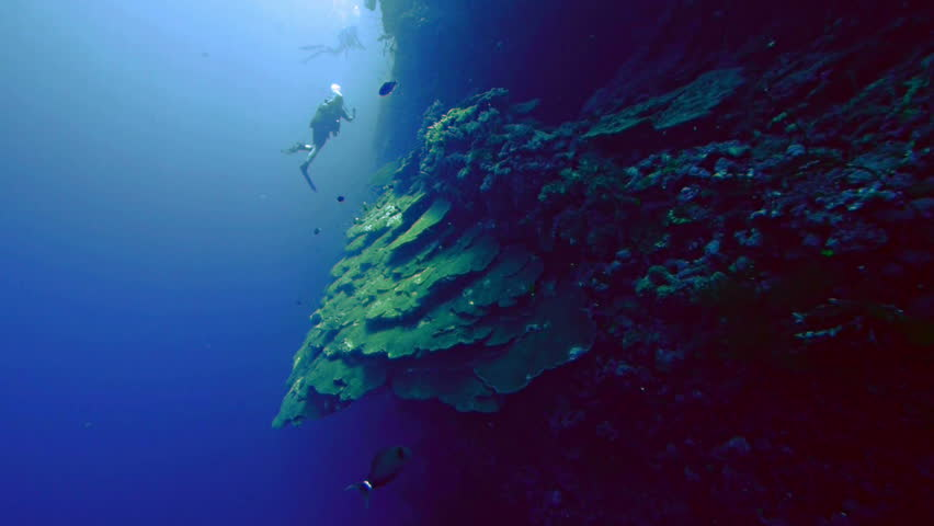 3 of the Deepest Points in the Ocean